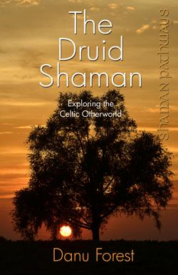 Druid Shaman