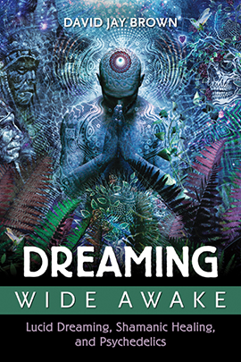 Dreaming Wide Awake by David Jay Brown