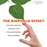 The Biophilia Effect