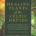 Healing Plants of the Celtic Druids by Angela Paine