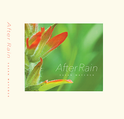 After Rain by Susan Maycock