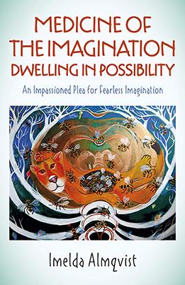 Medicine of the Imagination by Imelda Almqvist