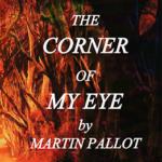 Around the Corner of My Eye by Martin Pallot